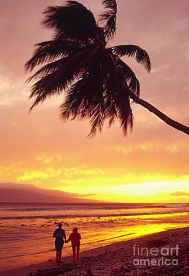 Palm Over The Beach Art Print
