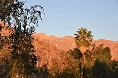 Photograph - Palm Springs Sunrise by Lisa Dunn