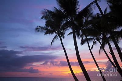 Palm Trees At Sunset, Keawekapu Beach Art Print