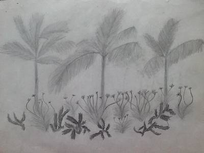 Drawing - Palm Trees by Jennifer Lopez