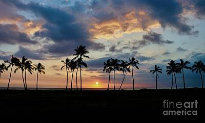 Photograph - Palms At Sunset by Craig Wood