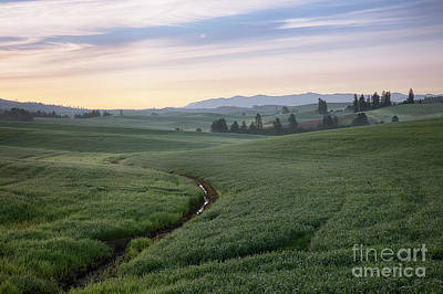 Photograph - Palouse Dawn by Idaho Scenic Images Linda Lantzy