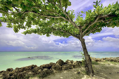 Photograph - Paradise Island by Nadia Sanowar