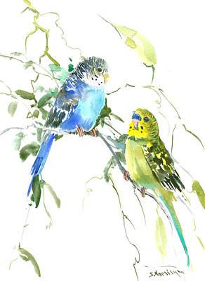 Parakeet Digital Art - Parakeets by Suren Nersisyan