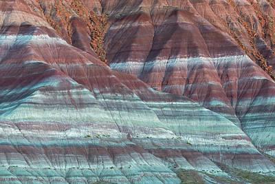 Paria Canyon Art Print