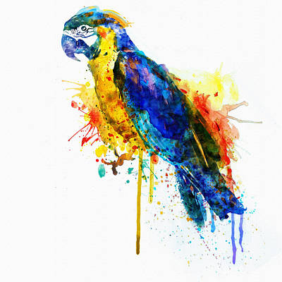 Bird Art Mixed Media - Parrot Watercolor  by Marian Voicu