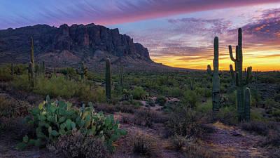 Photograph - Pastel Sonoran Skies  by Saija Lehtonen
