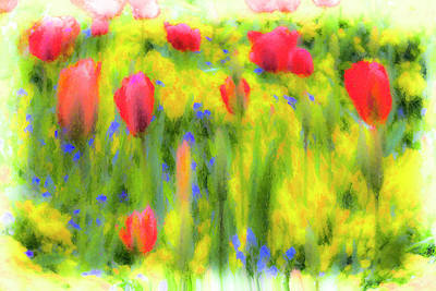 Photograph - Pastel Summer Flowers  by David Pyatt