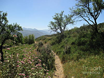 Photograph - Path From Lanjaron To Orgiva by Chani Demuijlder