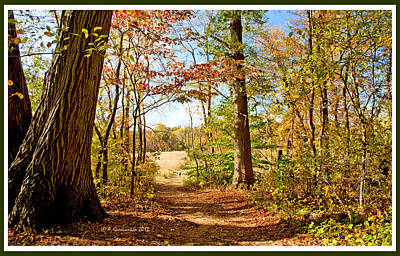 Pennypack Photograph - Path Out Of The Woods To A Meadow In Autumn by A Gurmankin