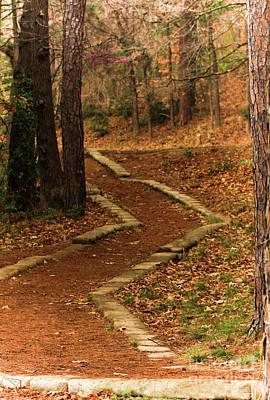 Caravaggio - Pathway by Kim Henderson