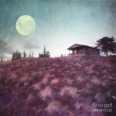 Cabins Photograph - Patience by Priska Wettstein