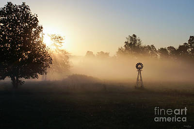 Photograph - Peace In The Morning by Jennifer White