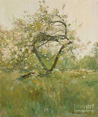 Cherry Bloom Painting - Peach Blossoms by Childe Hassam