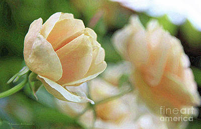 Photograph - Peach Rose by Inspirational Photo Creations Audrey Woods