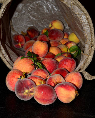 Photograph - Peaches by Charles Bacon Jr