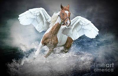 Photograph - Pegasus by Jim Hatch