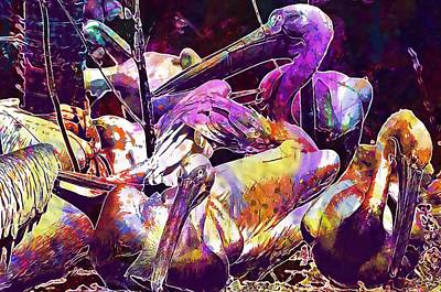 Digital Art - Pelicans Birds Bill Animal Plumage  by PixBreak Art