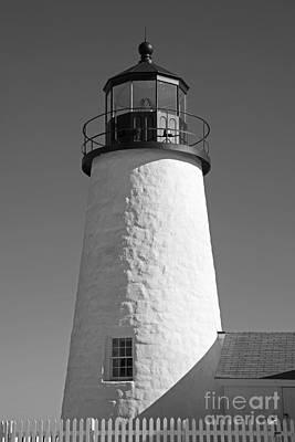 Photograph - Pemaquid Point Lighthouse by Alana Ranney
