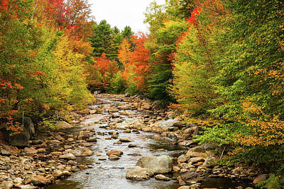 Photograph - Pemigewasset River by Robert Clifford