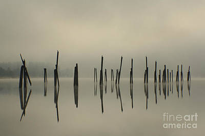 Photograph - Pend Oreille Reflections by Idaho Scenic Images Linda Lantzy