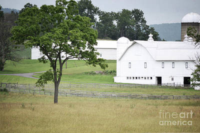 Photograph - Pennsylvania White Barn Countryside by Andrea Hazel Ihlefeld