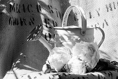 Photograph - Peonies And Old Watering Can by Phyllis Denton