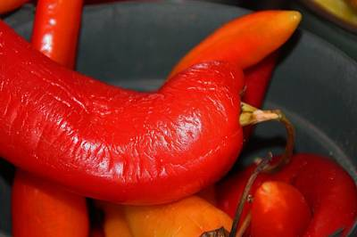 Photograph - Peppers IIi by Michiale Schneider