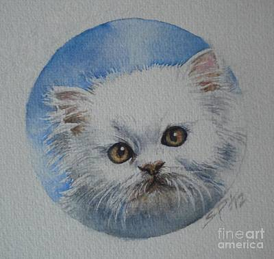 Painting - Persian Kitten by Sandra Phryce-Jones