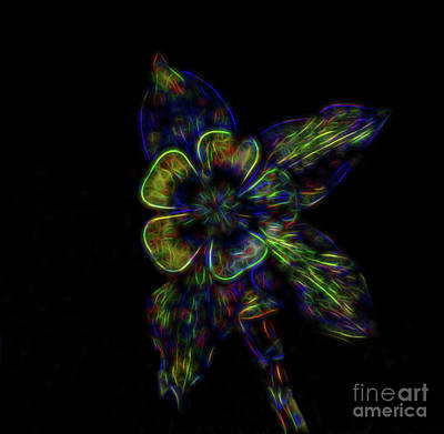 Photograph - Petals And Leaves by Steven Parker