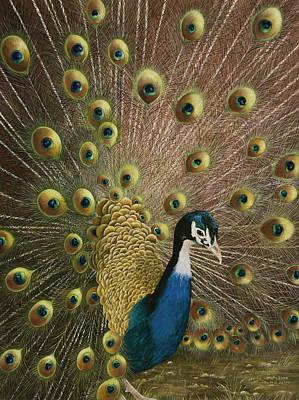 Arkansas Painting - Petit Jean Peacock by Mary Ann King
