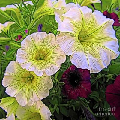 Photograph - Petunias by John Freidenberg