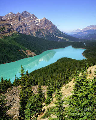 Photograph - Peyto Lake by Roxie Crouch