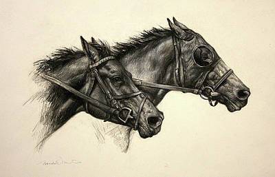 Drawing - Photo Finish by Meridith Martens