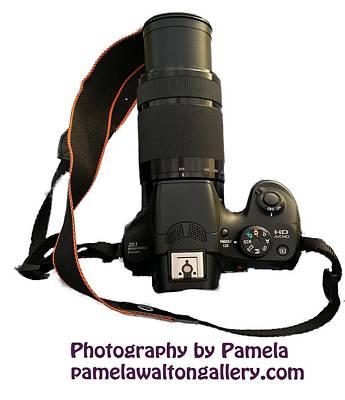 Photograph - Photography By Pamela by Pamela Walton