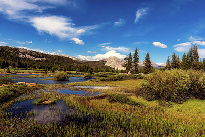Photograph - Picturesque Yosemite by L O C