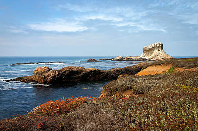 Photograph - Piedras Blancas Light Station by R Scott Duncan