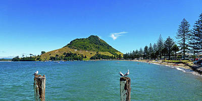 Photograph - Pilot Bay Beach 2 - Mount Maunganui Tauranga New Zealand by Selena Boron