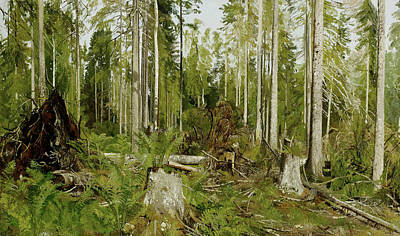 Russian Art Painting - Pine Forest by Ivan Shishkin