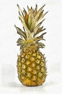 Painting - Pineapple by George Atsametakis