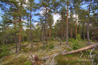 Pinewood Print by Veikko Suikkanen