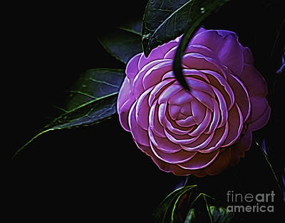 Photograph - Pink Beauty  by Ken Frischkorn