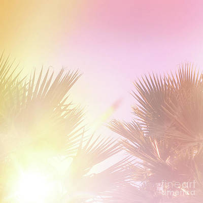 Art Print featuring the photograph Pink Palms 2 by Cindy Garber Iverson