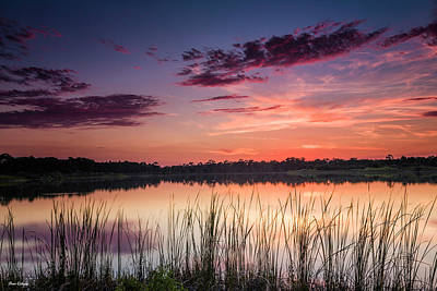 Photograph - Pink Sunset by Fran Gallogly