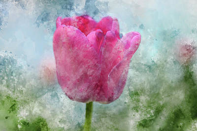 Photograph - Pink Tulip In The Garden by Brandon Bourdages