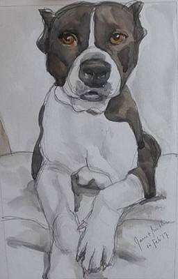Painting - Pit Bull by Janet Butler