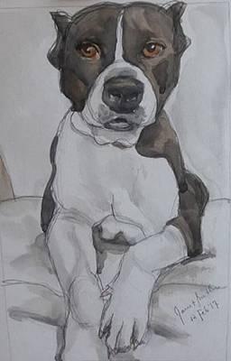 Pit Bull Art Print by Janet Butler