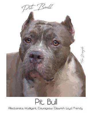 Digital Art - Pit Bull Poster by Tim Wemple
