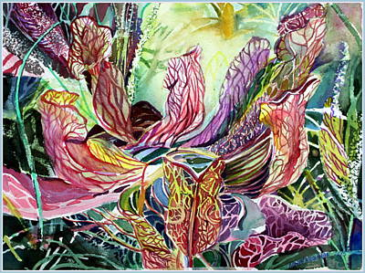 Pitcher Drawing - Pitcher Plants by Mindy Newman