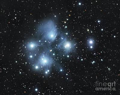 Photograph - Pleiades Cluster by David Watkins
